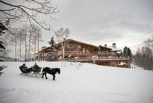 Winter Wellness / Winter Wellness / by Spafinder Wellness 365