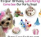 Who's Having A Birthday????!?!?! / Birthday Apparel For your Precious Pets!