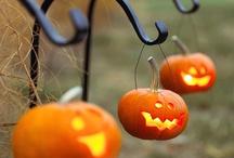 Halloween / by Ashley