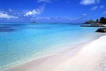 Spiaggie