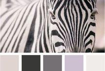 Color palettes/Kleurpaletten