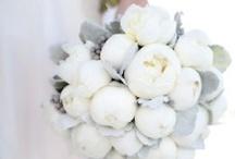 Wedding Details / by Elani Blu