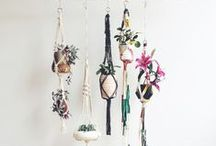 Home & Decor / by Audrey Kitching