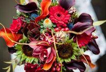 Wedding Stuff / by Mallory Brey