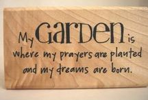 Gardenimg / Love to garden  nothing formal , just get out there and get my hands dirty !!! / by Nessie McNab