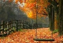 What is it about Fall..... / Fall Colors, the smell of Pumpkin Spice, and everything else I love about it :)