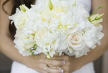 Kerry & Pete / April 2013 - Ivory and navy blue - ivory roses, whites, creams and greens. Simple, stylish, romantic.
