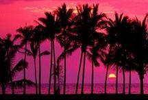 Maui Wowwee! / by Lee Ann Keiper Grasso