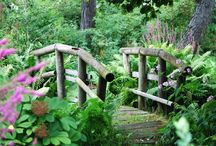 Garden time / Garden ideas / by Annette Gambrel