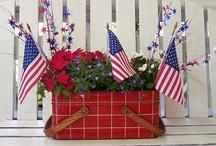 Stars and Stripes / 4th of July/patriotic / by Barbara LaVista