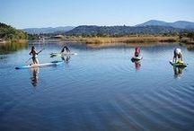 Napa Valley Wellness / Spas, Pools, Yoga and More.