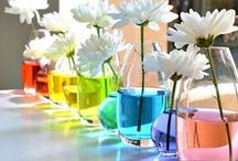 I love color! / by Amie Gaddie