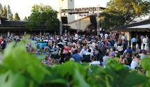 Events, Holidays & Festivals in Napa Valley / Napa Valley Events and Festivals to attend.