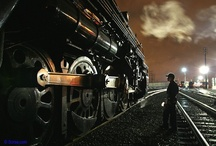 Trains / by Brian Lane Herder
