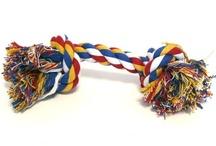 Coin salle de jeu  / Pleins de jouets pour votre chihuahua : balles,  jouets à mâcher, jouets à lancer, ....