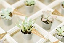 Wedding Favors / Thoughtful, meaningful and otherwise fabulous wedding favors.