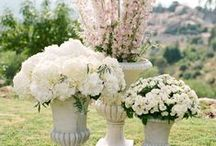 Wedding Flowers / All those other wedding flowers that bring warmth and love to the entire wedding celebration!