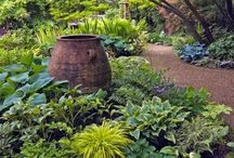 """GARDEN"" / Garden ideas!!  / by Kim Lamb"