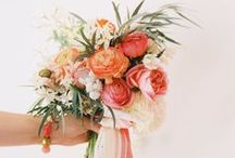 Floral Design 101 / Help us learn the names of the trendy flowers, the old-fashioned classics, the ins-and-outs of seasonal consideration ... help us help others when it comes to making these all important wedding decisions!