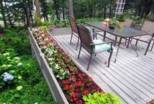 Gardening / Tips and ideas for your garden.
