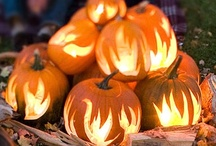 HALLOWEEN / Halloween is one of our families favorite holidays,