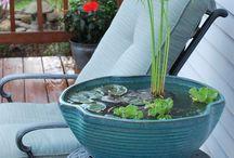 Porch Gardens / Small space gardens