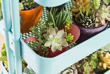 Ikea Inspiration / by Tori Naylor