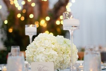 Wedding {Inspirations} / Wedding {Inspirations} Everything from cake to flowers, from details to dresses, etc, etc, etc.