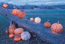 Autumn / by Deborah Swanson