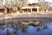Siwa Oasis, Egypt - my photographs / my photographs of Siwa, 1995 to now