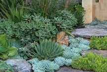 Gardens / Relaxing, uncomplicated outdoor space.  / by summer mitchell