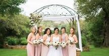 Spring Weddings / March, April, and May weddings at Kindred Oaks