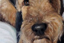 Airedales / by Elisa Marchand