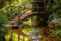 Peaceful places & serenity / These are some of my favorite places in the world that I could find peace & serenity.