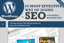 SEO | Infographics / by Inbox Insight