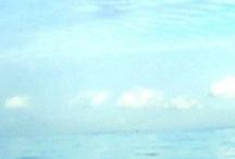 Florida Keys Living
