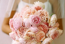 Wedding ideas / by Victoria Tuttle