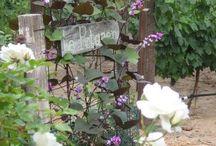 My secret garden / by Linda Turner
