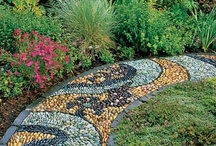 Gardening & Landscaping / Gardening tips and related / by Teresa Wehr