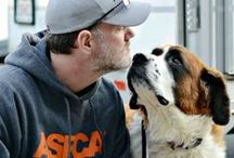 Disaster Response  / by ASPCA