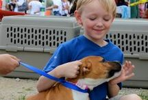 ASPCA Parents: Kids & Pets / Do you have a little animal lover in your family? Find all the resources you need to teach your children to be responsible pet parents here and on our ASPCA Parents Site! http://www.aspca.org/parents / by ASPCA