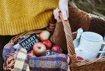 Fall Styled shoot at the OLD WHITE BARN. / Deep jewel tones. Plaids, wood, copper, and pewter, accents. Design elements include Modern and Rustic with a touch of Boho.