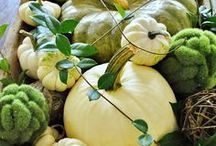 Decorating-Autumnal / Fall decorations, indoors and out, Halloween and Thanksgiving, pumpkins, gourds, kale, pansies, urns, mums / by Cheryl Jones