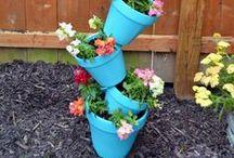 Outdoor & Gardening / Tips, tricks, ideas, and inspiration for outdoors, gardening, garden management, planting, flowers, etc.