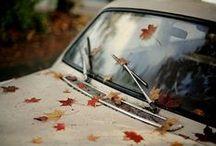 Autumn / by Marie-Françoise Berriot