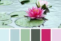 Colors III / by Terry Williamson Sierzenga