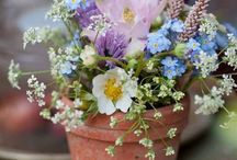 Flowers / by Marie-Françoise Berriot
