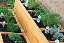 Craft | Gardening