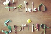 SPRING FINDS / Gifts,housewares,wedding ideas,jewels,pictures and quotes about Spring