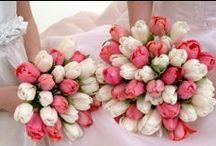 Dutch Tulip Wedding / Dutch Tulip Wedding